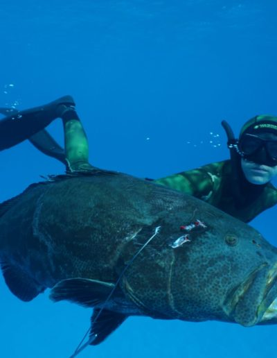 Taylor Barit 1 USA Record Black Grouper