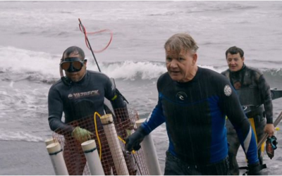 Chef Ramsay Spearfishing In Maui